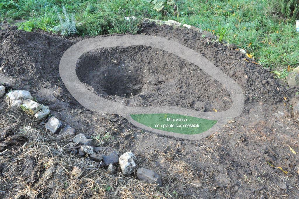 Leggi argomento piccolo laghetto nell for Costruire laghetto in cemento
