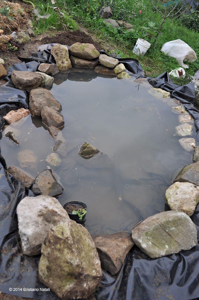 Lo stagno opera incompiuta orto naturale blog for Costruire uno stagno